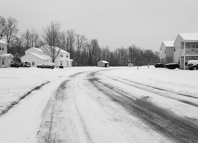 February 1-A Street FMSPhotoADayChallenge Fmsphotoaday Snow Winter Outdoors Nature North Country Upstate New York Nny PhotoADay Photo Challenge Black & White Photography Black & White Blackandwhite