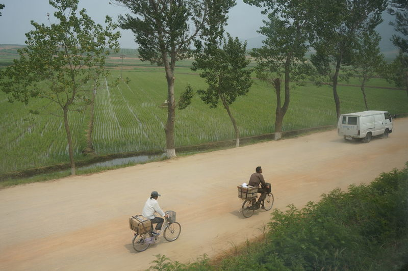 High angle view of men riding bicycles on country road