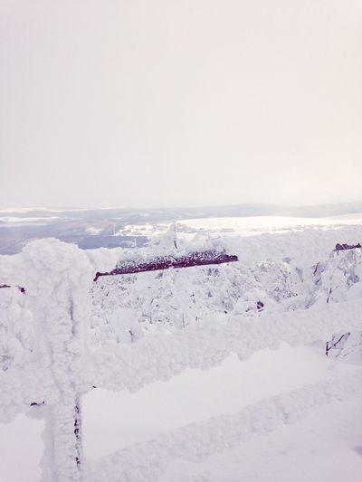 Skiing Snow Germany Beautiful