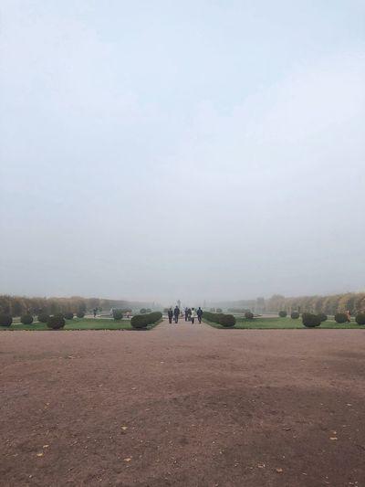 Туман в