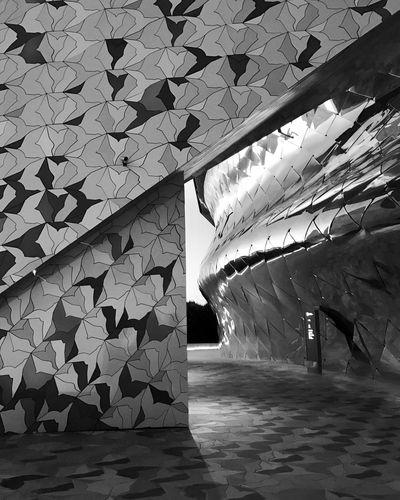 The Architect - 2017 EyeEm Awards Philharmonie De Paris Philarmonic Jeannouvel Architecture Paris Peace Birds
