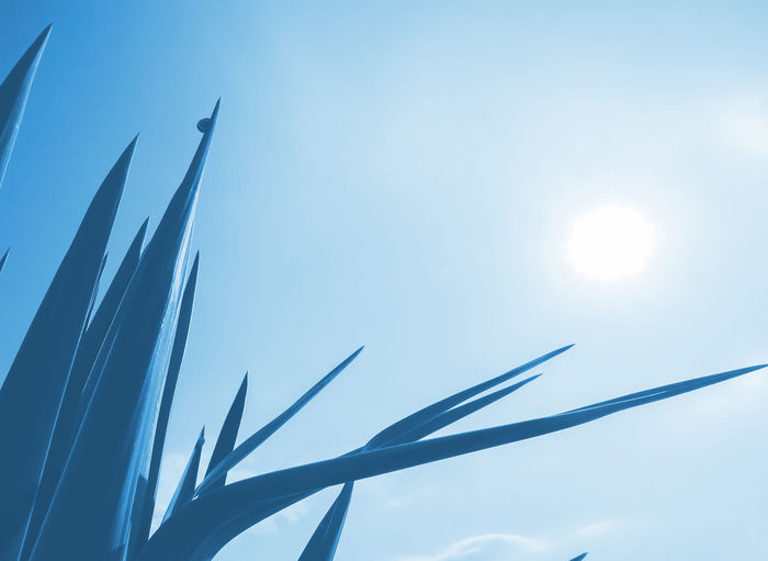 yucca palm tree in blue, tinted The Minimalist - 2019 EyeEm Awards Blade Of Grass Silhouette Sunbeam Connection Growth Close-up Lens Flare Beauty In Nature Metal Cloud - Sky Outdoors Sunny Blue Sun No People Day Nature Sunlight Low Angle View Sky