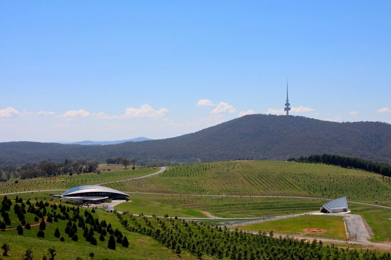 Black Metal Black Mountain Canberra Countryside Day Distant Exploring Grass Hill Horizon Over Land Landscape Mountain Mountain Range National Arboretum Nature Non-urban Scene Outdoors Remote Scenics Telstra Tower Tranquil Scene Tranquility Trip Vacation