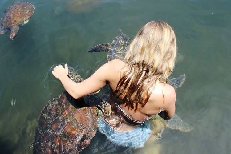 Has anybody else ever been hugged by turtles 😄 ? Water One Person One Woman Only Beauty People Swimming Adult One Young Woman Only Young Women Young Adult Day Close-up Outdoors Beauty In Nature Pacific Western Samoa EyeEmNewHere Island Samoan Beauty EyeEm Nature Lover Samoa  Landscape Turtle Turtle Love Turtle Cuteness