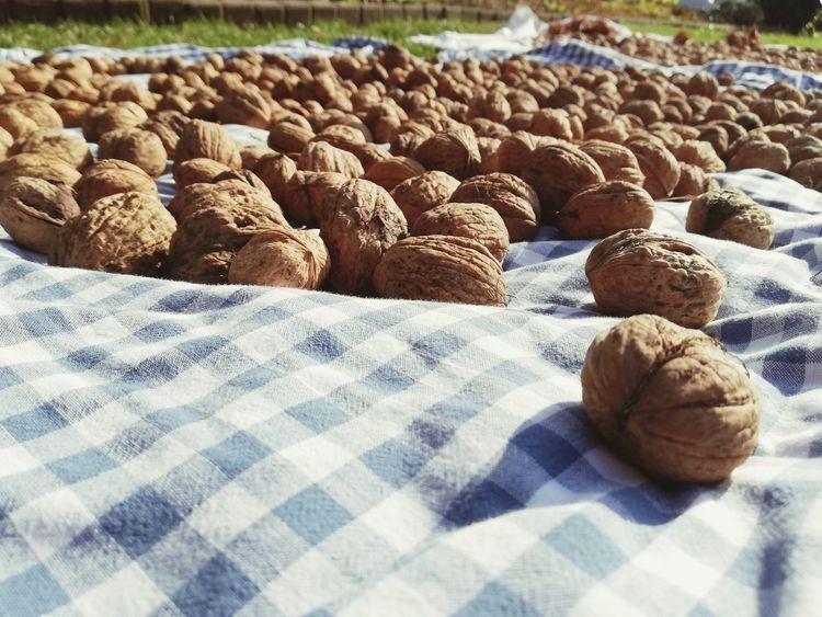 Walnüsse so weit das Auge reicht Walnut Walnuts Healthy Lifestyle Healthy Food Walnüsse Walnuss Sand Close-up Assortment