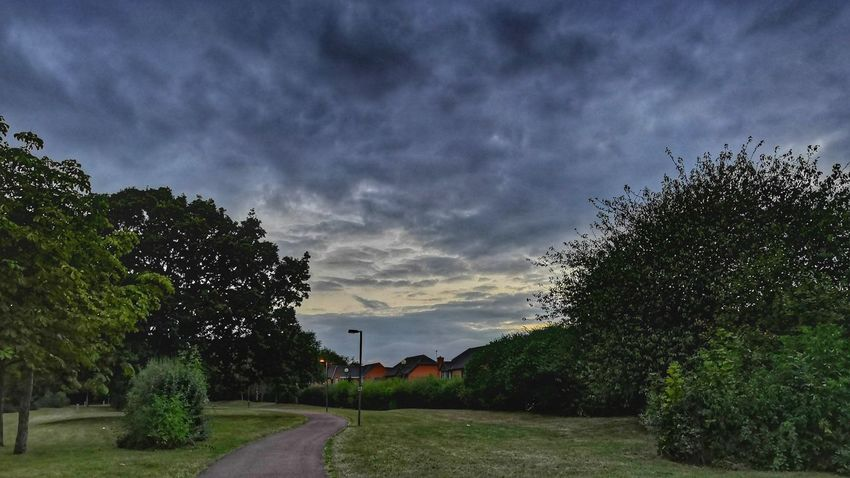 night begins to fall Honor 10 United Kingdom Bushes Nightsky Evening Tree Sky Cloud - Sky Grass Dramatic Sky Atmospheric Mood Overcast Atmosphere Meteorology Cloudscape Moody Sky