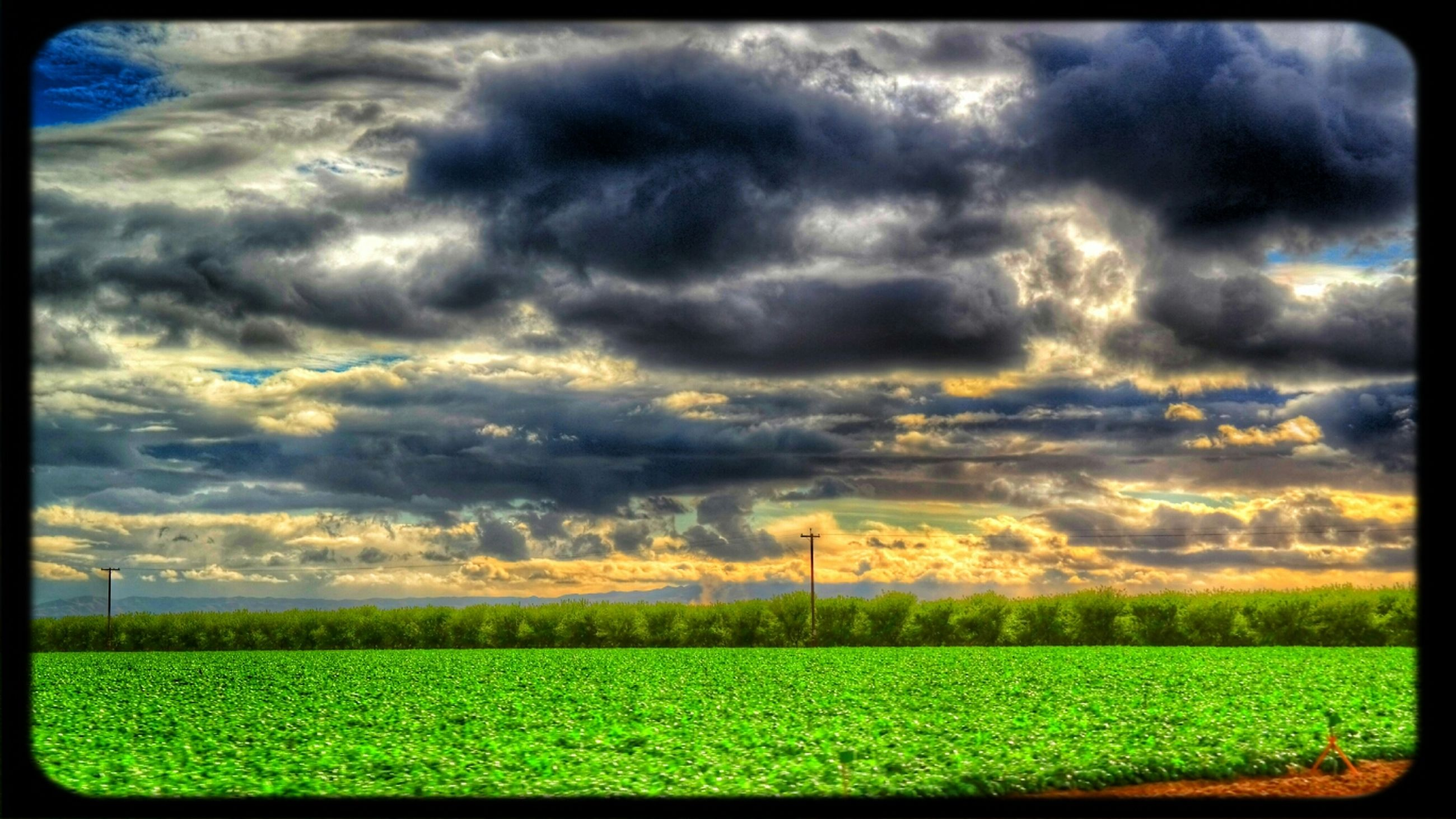 sky, cloud - sky, field, cloudy, landscape, tranquil scene, beauty in nature, tranquility, scenics, nature, grass, cloud, rural scene, growth, dramatic sky, transfer print, overcast, weather, storm cloud, auto post production filter