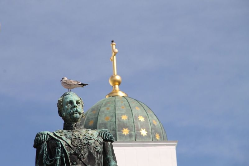 Bird Perching On Statue Against Helsinki Cathedral