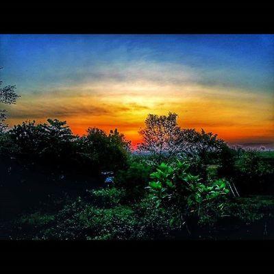 -Larik Mega Melirih Senja  Alamraya Ufukpetang Pemandangan Nature Scenery