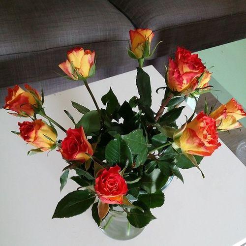 Zum zwei-monatigen Hochzeitstag bringt der Bestermannderwelt natürlich meine Lieblingsblumen mit Ichliebedich glücklich liebe rosen