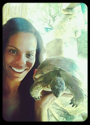 Selfie✌ Tortoiselife Color Portrait Animal Love Sardinia Sardegna Italy  Animal_collection Animal Portrait I Love Animals