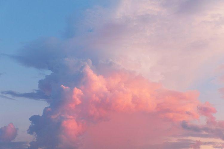 Sunset Multi
