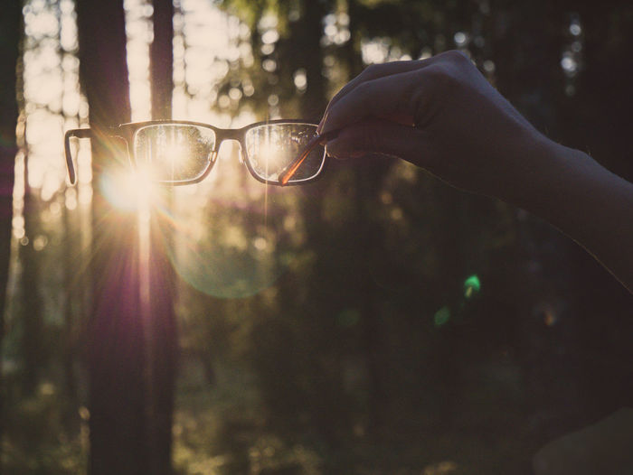 Hand holding a pair of vintage glasses in the air. Forest during sunset in the background. Beautiful Calm Camping Glasses Nature Optics Trees Walk Alternative Close-up Day Forest Healthy Lifestyle Holding Human Hand Lens Flare Light And Shadow Magnifying Glass Outdoors Rewilding Sunset