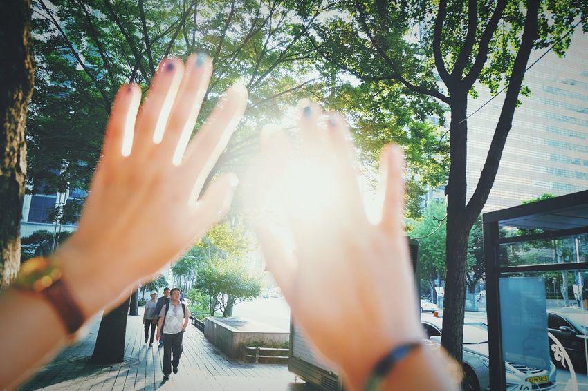 Sunshine Hands Shiny Day Shiny Urban Seoul Manicure! City Urbanlife Lifestyle