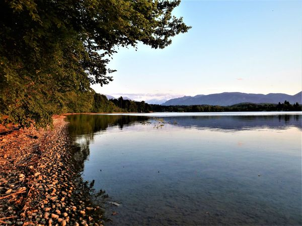 Staffelsee Lake Bavaria Late Summer Murnau Staffelsee Beauty In Nature Clean Clean Nature Clear Water Evening Lake Nature No People Reflection Tranquil Scene Tranquility Water