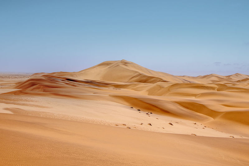The sand dunes in namib desert
