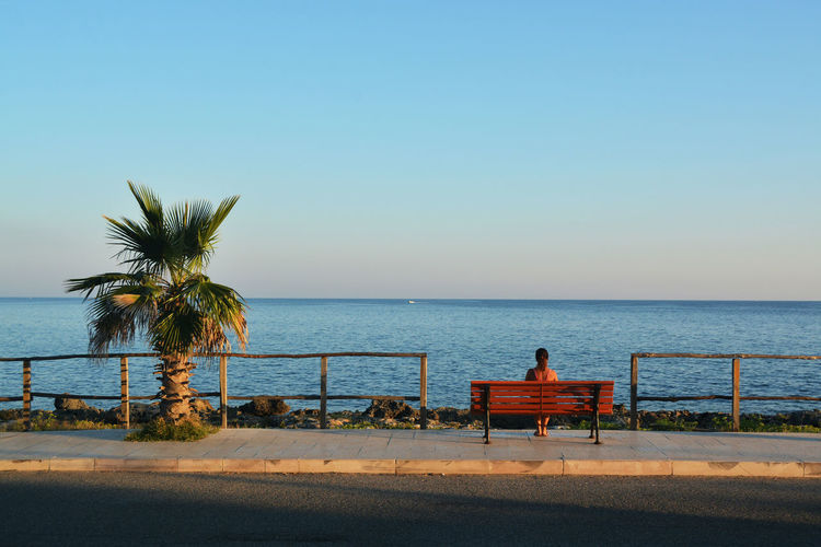 The shadow of the sea Bench EyeEmNewHere Palm Tree Beach Beauty In Nature Clear Sky Horizon Horizon Over Water Nature Outdoors Plant Promenade Salento Scenics - Nature Sea Sitting Sky Street Streetphotography Tranquility Tree Tropical Climate Water