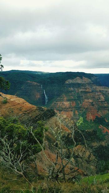 Here Belongs To Me Kauai♡