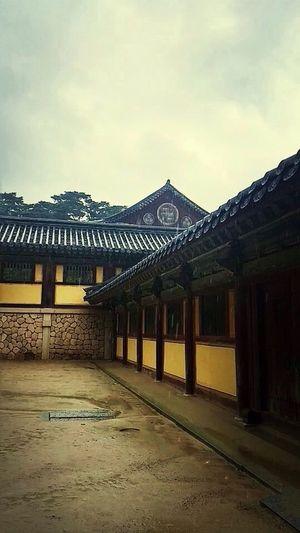 Traveling Trip South Korea