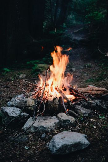 campfire Burning Flame No People Outdoors Bonfire Night Nature Close-up Campfire First Eyeem Photo