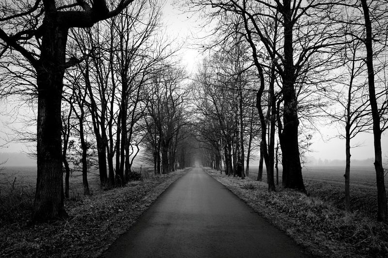 Naturelovers Blackandwhite Photography Darkness And Light Landscape_photography Blackandwhitephotography Wanderlust Open Edit