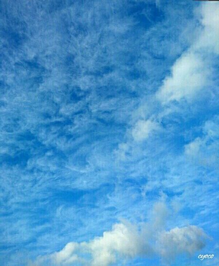 White Blue くも 雲 ソラ 空 Sky Sky_collection Sky Of Japan Japan Photography Every Moment Is Unique Eyeem Photography EyeEm Gallery Eyeem Sky_collection Nature Photography Sky And Cloud Collection Mother Nature EyeEm Nature Lover Clouds Japan Nature_collection Sky And Clouds