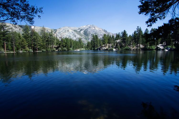 Wilderness adventure in the mountains EyeEmNewHere Tree Reflection Beauty In Nature Mountain Nature Tranquility Tranquil Scene Lake Water Blue Scenics No People Sky Outdoors Waterfront Day Clear Sky EyeEmNewHere