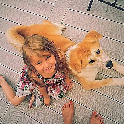 Carmella MyGIRL Luvmygirl PuppyLove Mylove Dog Akita JapaneseAkita Luvmyakita Akitainu  Perfect Beautiful Prettygirl