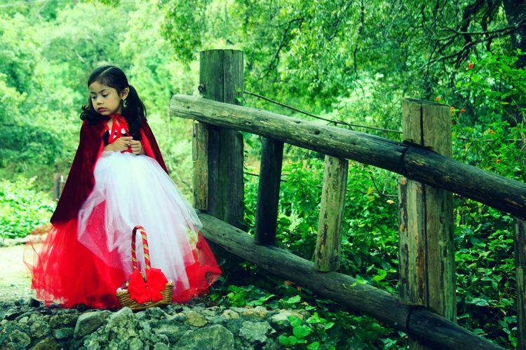 Nina Caperucita Roja Naturaleza Parque Chipinque Bosque Manzanas Canasta