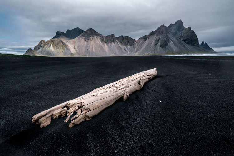 Scenic view of driftwood on land against sky