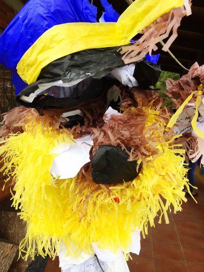 Piñatas Cumpleaños EyeEm