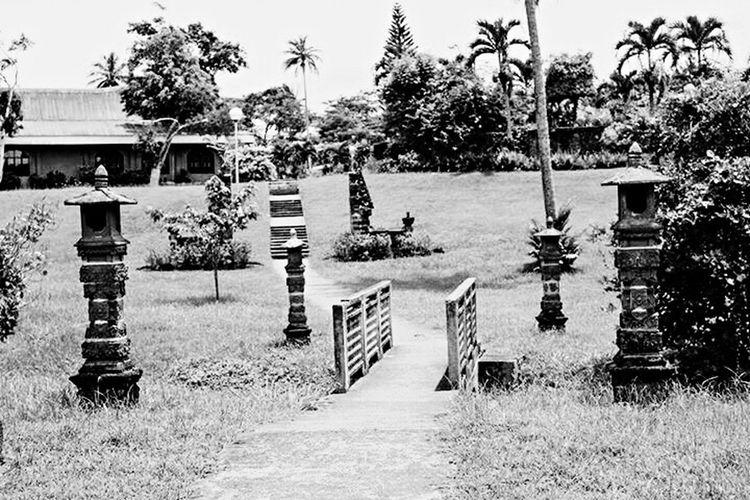 Bridge Path Pathway Path In Nature EyeEm Gallery EyeEm Nature Lover EyeEm Temple Miniature Garden AIIAS
