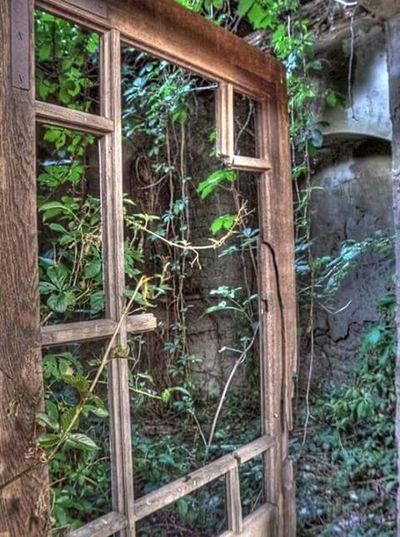 Old Old Door