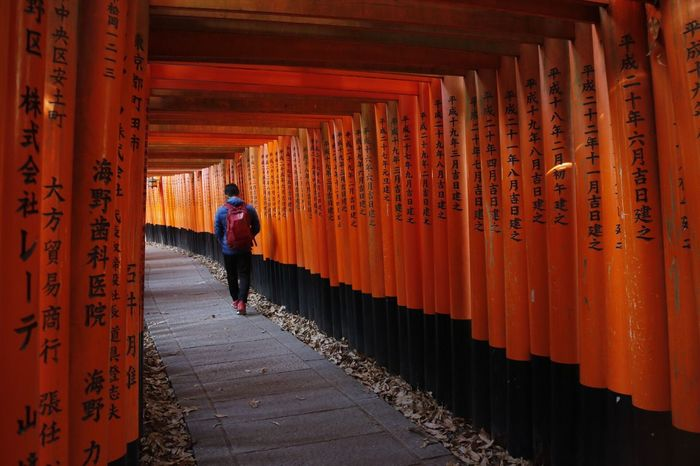 Fushimi inari shrine Canon Airasia Japan Walk Path Tori Unique Naruto Gate Travel Solo Shrine Inari Fushimi Hiking Orange Color Full Length Real People The Way Forward Rear View One Person Walking Built Structure Architecture Men Place Of Worship Spirituality Day Travel Destinations Outdoors