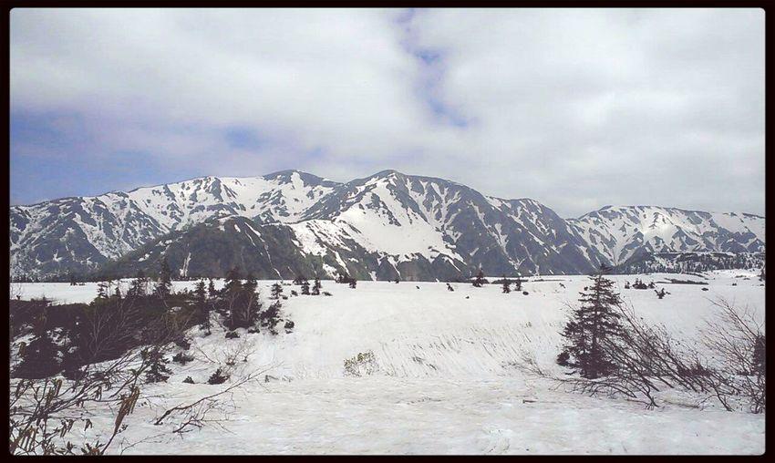 初次遇雪景
