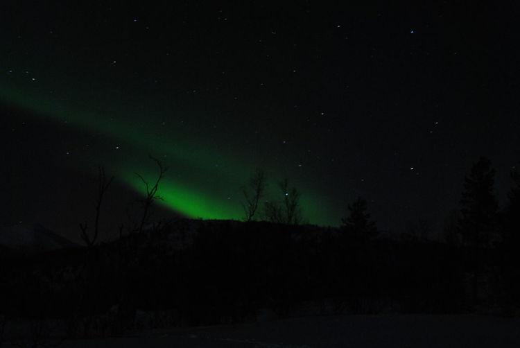 Darkness Norway Polar Lights Winter darkness and light Polar Circle Polarlights Snow