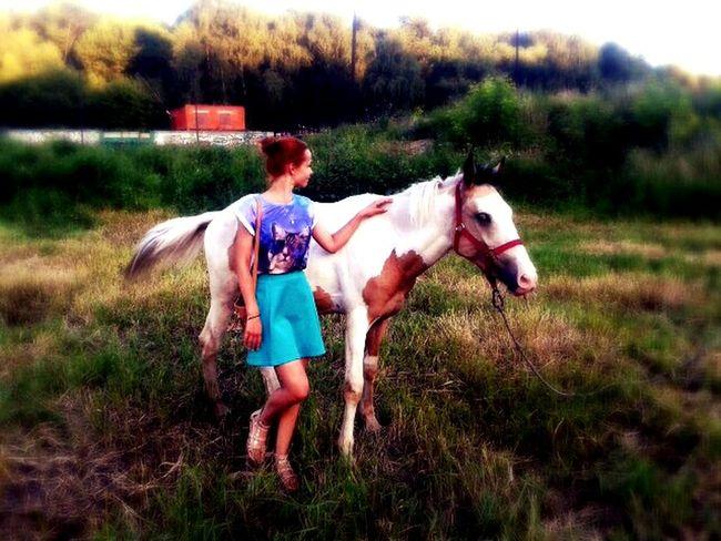 Horse Love Podolsk