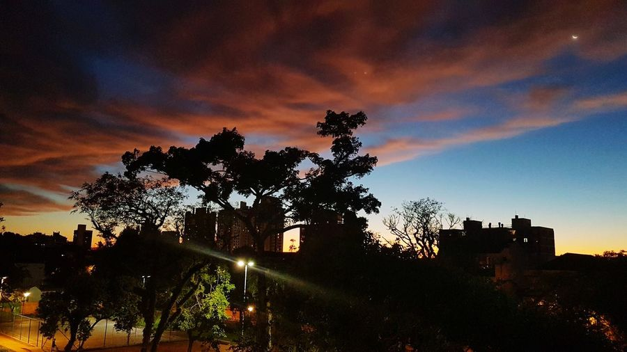 Tree Sunset Night Illuminated No People Outdoors Sky City Beauty In Nature Sunset