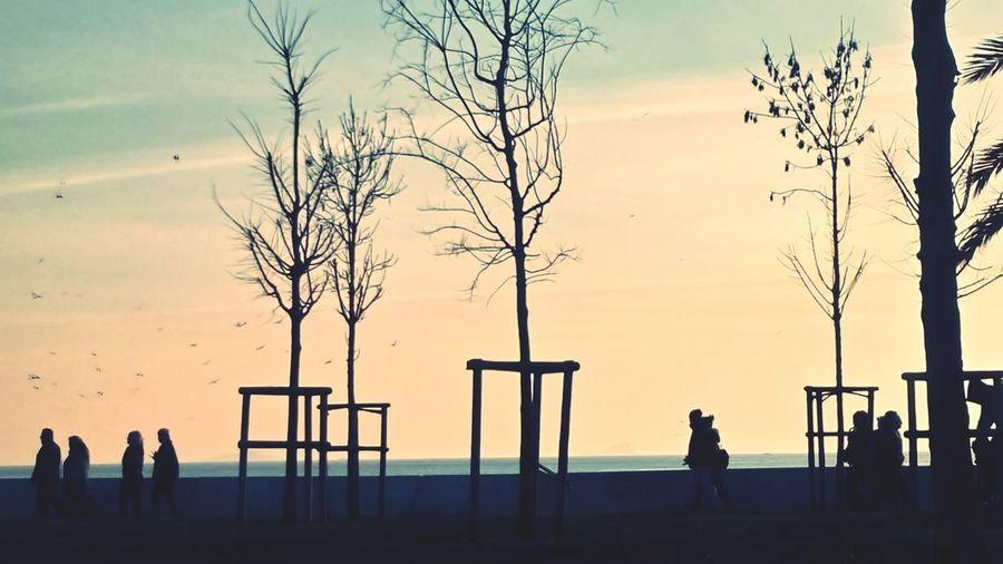 Tree Sunset Silhouette Sportsman Oil Pump Water Standing Men Sky EyeEmNewHere