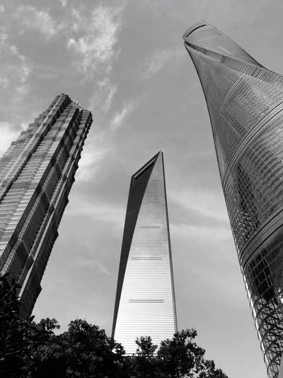 Architecture Built Structure Low Angle View Skyscraper Modern Sky Tall - High Tower Travel Destinations Building Exterior City Cloud - Sky History Travel Tree Outdoors No People Day Shanghai IPhone Photography Live For The Story