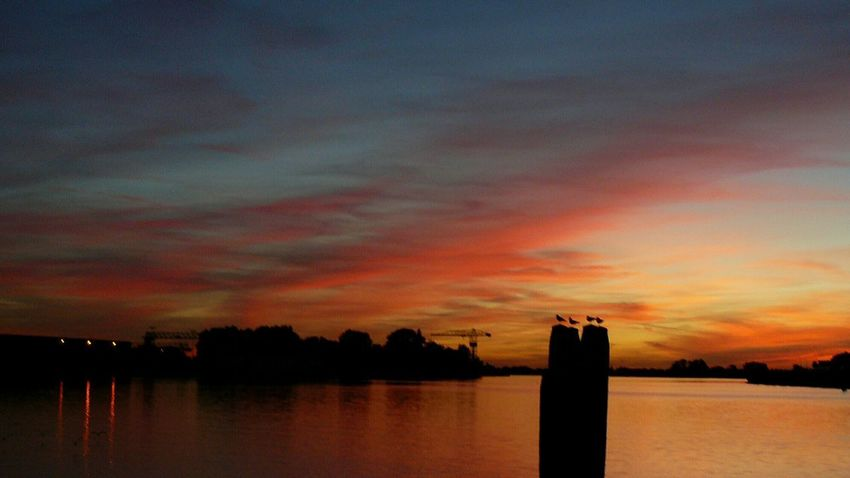 Water Sunset Multi Colored City Silhouette Reflection Lake Sky Building Exterior Architecture