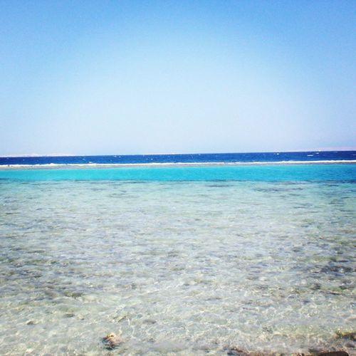 Море чистое прекрасное назадпроситвернуться скучаетпомне