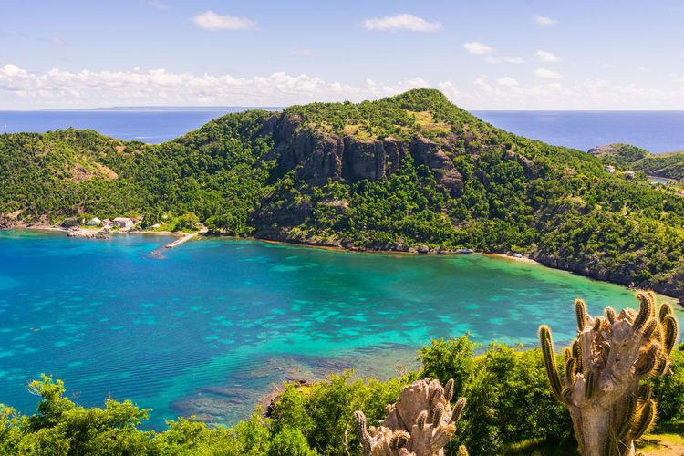 Terre-de-Haut Island, Les Saintes, Guadeloupe archipelago Saintes Guadeloupe Terre De Haut Tropical West Indies Turquoise Caribbean Caribbean Sea View Scenics Nature Napoleon Fort Antilles Archipelago French France Gwada  Island Idyllic Non-urban Scene Blue Outdoors Beauty In Nature Cactus