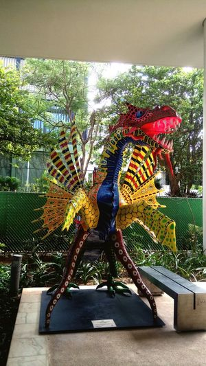 Dragones reales! Multi Colored Close-up No People
