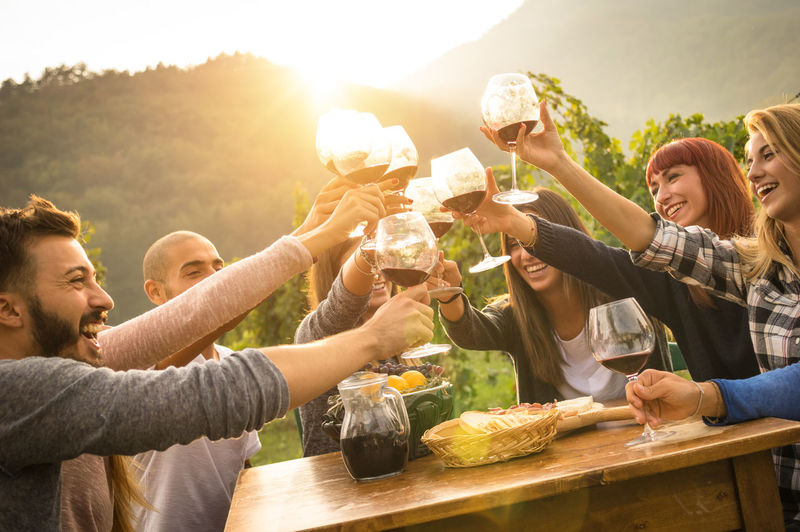 Friends toasting wineglasses during party