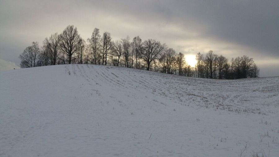 Sunset Landscape Trees Winter Snow Field Skiing The Purist (no Edit, No Filter) Hill