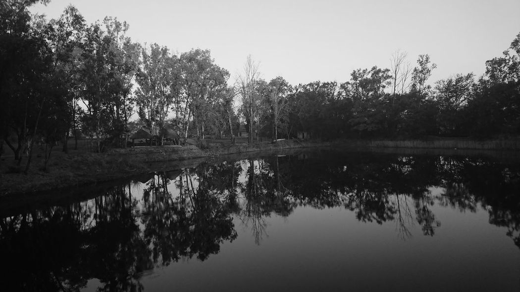 Reflection of trees in lake against sky Blackandwhite Photography EyeEm Nature Lover Eyem Best Shots Eyem Best Shots Nature_collection Eyem Black And White Lake Landscape Morning Sky Nature Old Style Outdoors Reflection Reflection Lake Sky Sony Sony Xperia Sony Xperia Xz Tree Water