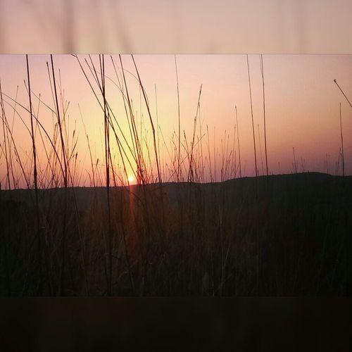 Sunset at it best... Sunset Sun_collection