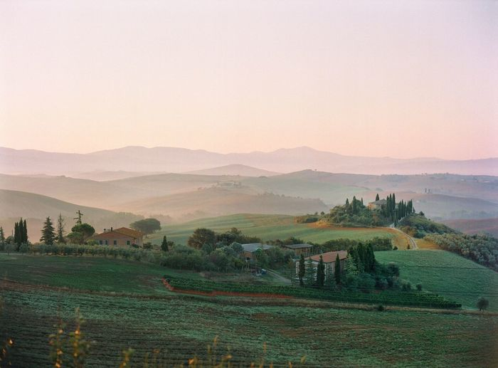 Tuscany Travel Destinations Tuscany Filmphotography Italy EyeEm Scenics - Nature Landscape Agriculture Beauty In Nature Plant Tranquil Scene Environment Rural Scene Land Tranquility Nature Field No People Outdoors