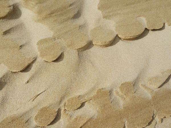 Beach Textures Sand Texture Sandy Beach Sand Texture Backgrounds Sand Textured Beach Backgrounds Sand Full Frame Textured  Pattern High Angle View Close-up
